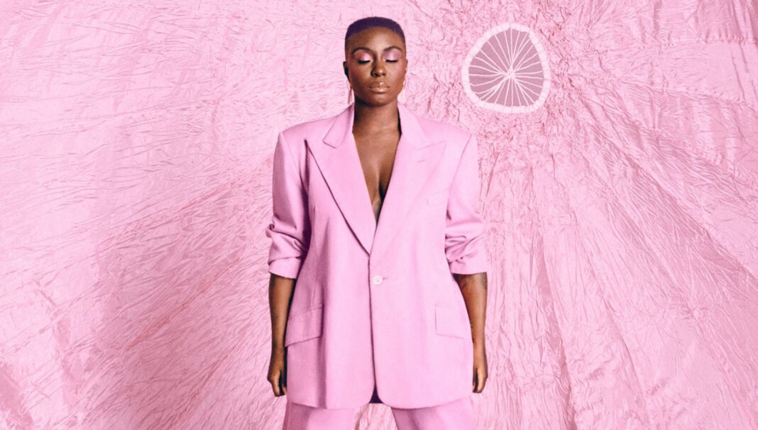 Laura Mvula Pink Noise review
