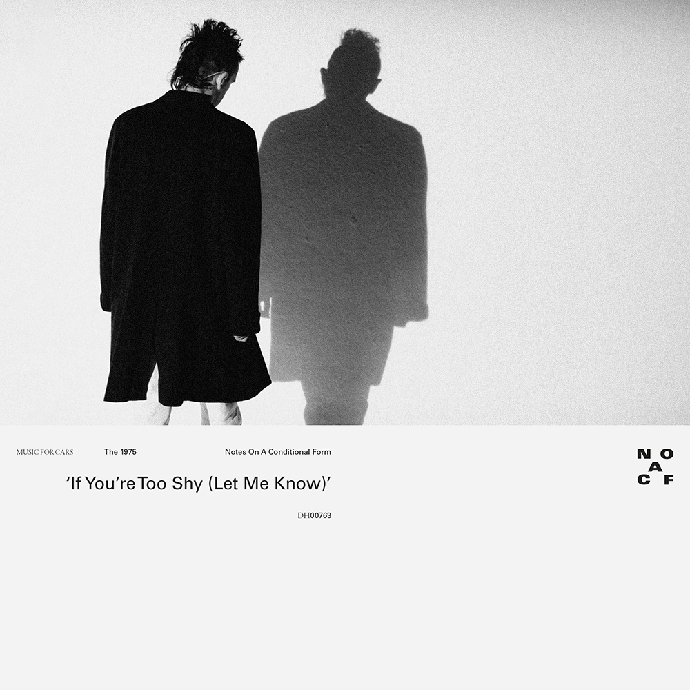 The 1975 - Too Shy