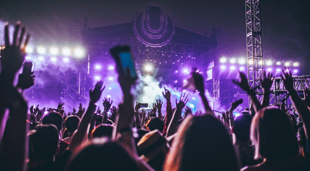 Music festival crowd night